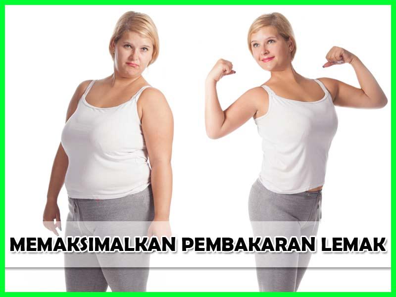 WSC Biolo Obat Diet Paling Laris