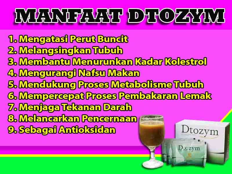 Jual Suplemen Diet Dtozym di Dolok Sanggul