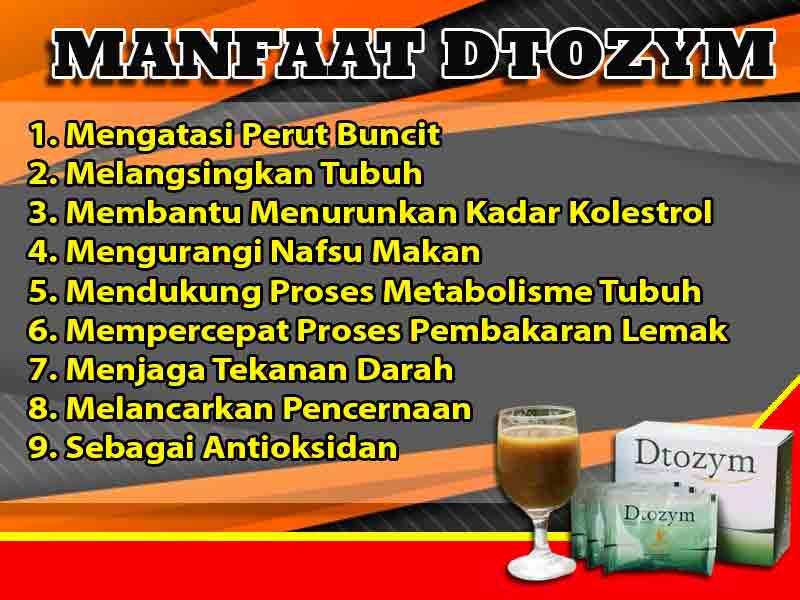 Jual Obat Diet Dtozym di Labuha