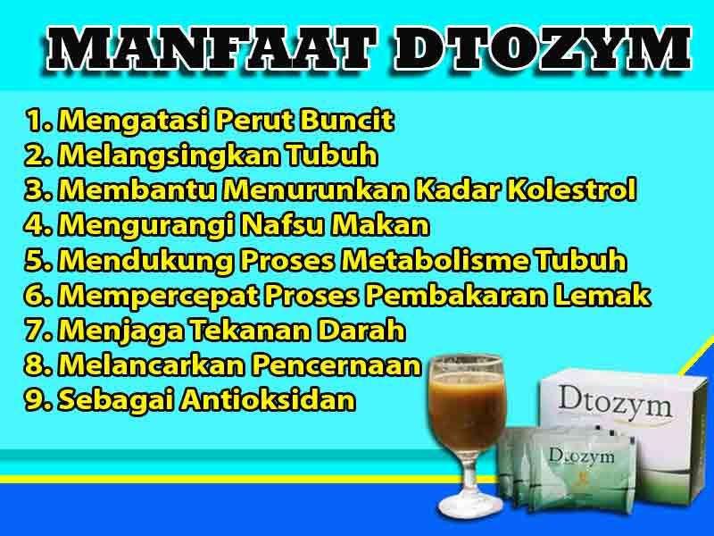 Jual Obat Diet Dtozym di Buranga